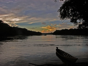 Amazon Jungle Sunrise